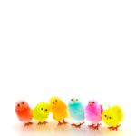 Vœux de Pâques par email 202