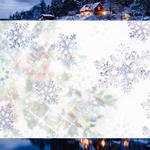 Cartes virtuelles pour le nouvel an 246